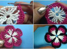 5 petal flower